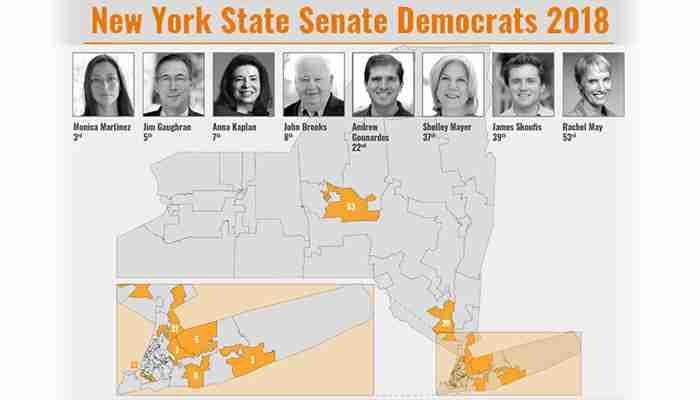 NY State Senate Democrats 2018